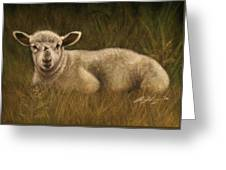 Lazy Lamb Greeting Card by Rachael Curry