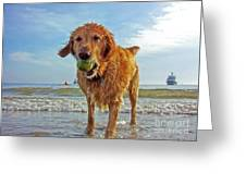 Lazy Summer Days At The Beach Greeting Card by Nishanth Gopinathan