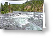 Le Hardy Rapids In Yellowstone River In Yellowstone National Park-wyoming   Greeting Card