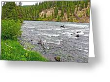 Le Hardy Rapids Of Yellowstone River In Yellowstone River In Yellowstone National Park-wyoming   Greeting Card