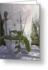 Le Orchidee Sfumate Greeting Card