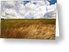 Leaden Clouds Over Field Greeting Card