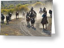Leading Horses To Pasture Greeting Card
