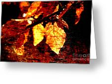 Leaf And Light Abstract Greeting Card by Natalie Kinnear