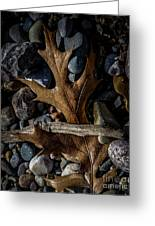 Leaf And Stones Greeting Card