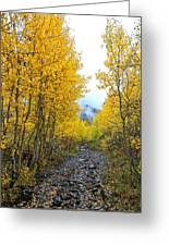 Leaf Covered Rocky Road Greeting Card