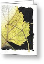 Leaf Greeting Card by Elena Yakubovich