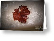 Leaf In Snow Greeting Card