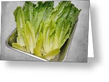 Leaf Lettuce Greeting Card