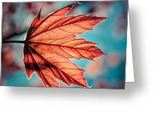 Leaf Of Light Greeting Card