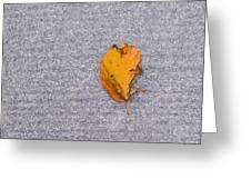 Leaf On Granite 3 Greeting Card