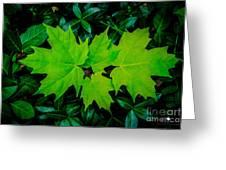 Leaf Overlay Greeting Card