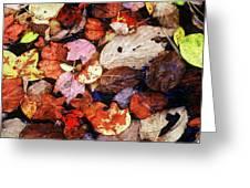 Leaf Patterns 2 Greeting Card