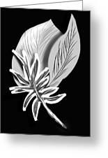 Leaf Ray Greeting Card