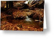 Leaf Splatter Greeting Card