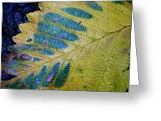 Leafscape 1 Greeting Card