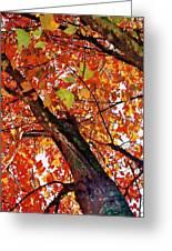 Leafward Greeting Card