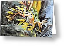 Leafy Dragon Greeting Card