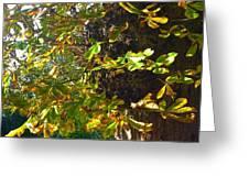Leafy Tree Bark Image Greeting Card
