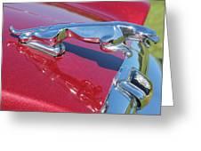 Leaper Hood Ornament On Red Jaguar Greeting Card