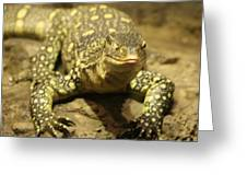 Leapin Lizards Greeting Card