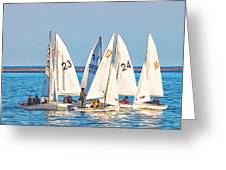Learning To Sail  Greeting Card
