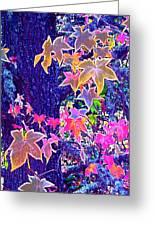 Leaves 1 Greeting Card
