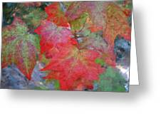 Leaves 2 Greeting Card