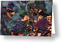Leaves Abstraction IIi Greeting Card
