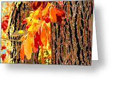 Leaves And Bark Greeting Card