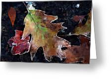Leaves And Frost Greeting Card