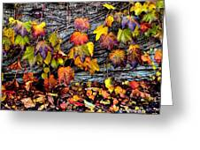 Leaves At The Levee Greeting Card