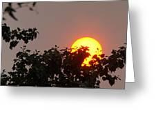 Leaves Cradling Setting Sun Greeting Card