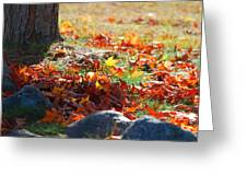 Leaves Falling Greeting Card