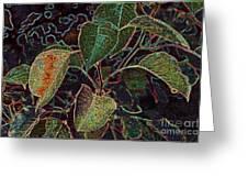 Leaves  Greeting Card