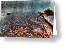 Leaves In The Lake Greeting Card