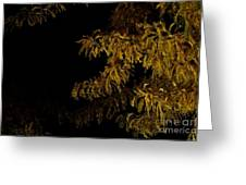 Leaves In The Night I Greeting Card