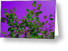 Leaves On A Purple Sky Greeting Card