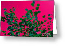 Leaves On Pink Back Lit Sky Abstract Greeting Card