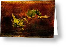 Leaves On Texture Greeting Card