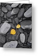 Leaves With Rocks Greeting Card