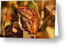 Leaving Autumn Greeting Card
