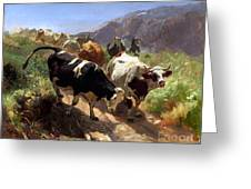 Leaving The Mountains Greeting Card