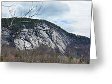 Ledge In New Hampshire Greeting Card