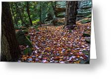 Ledges Overlook Trail 5 Greeting Card