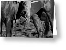 Legs Black And White Greeting Card