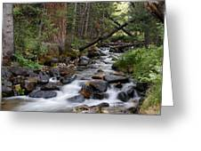Lehman Creek In Great Basin National Park Greeting Card