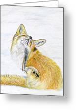 Leisure Fox Greeting Card