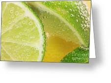 Lemon And Lime Slices In Water Greeting Card