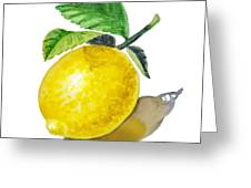 Artz Vitamins The Lemon Greeting Card